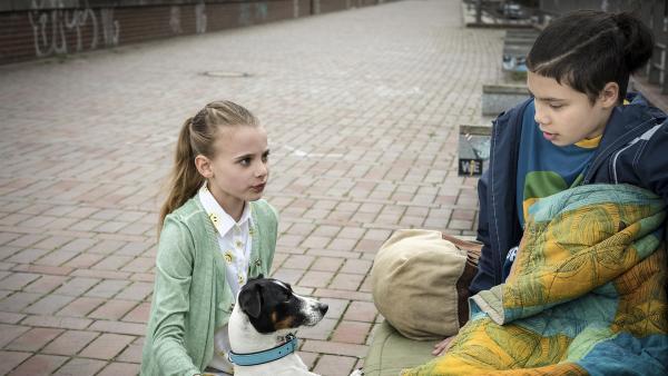 In der Hafencity lernen Alice (Emilia Flint) und ihr Hund Murphy den afghanischen Flüchtling Jamal (David Ganser) kennen. | Rechte: NDR/Boris Laewen
