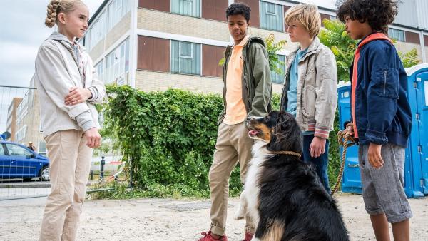 Mischa (Greta Bohne, li.) tut es leid, dass sie Pepper einfach mitgenommen hat. | Rechte: NDR/Boris Laewen