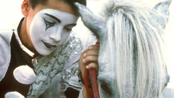 Der Zirkusjunge Rafael (Kostja Ullmann) liebt sein altes Pony Flocke über alles. Doch Flocke ist krank und der Zirkus hat kein Geld, um es gesund zu pflegen. Rafael unternimmt alles, um Flocke vor dem Abdecker zu retten. | Rechte: NDR/Baernd Fraatz
