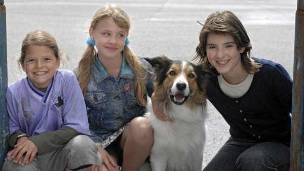 Lilly (Laura Gabriel, 2.v.li.) und ihr neuer Hund Fee kommen gut bei Marie und Yeliz (Nina Flynn, Mira Lieb, v.li.) an. Die drei Mädchen werden schnell zu dicken Freunden. | Rechte: NDR/Romano Ruhnau