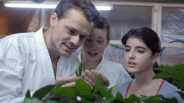 Karol (Moritz Glaser) und Yeliz (Mira Lieb) sind entsetzt, als ihnen ihren Polizisten-Freund Nils (Sven Waasner, li.) Haschisch-Pflanzen zeigt, die auf dem Speicher-Boden der Krogmanns gezüchtet werden. | Rechte: NDR/Romano Ruhnau