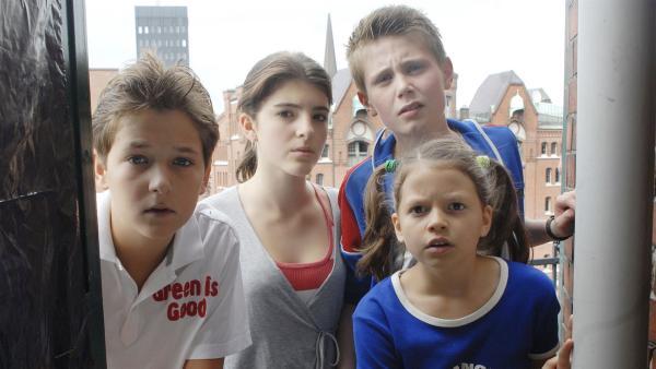 Die Pfefferkörner (Tim Tiedemann, Mira Lieb, Moritz Glaser, Nina Flynn, v.li.) können es nicht glauben: Haschisch im Teekontor. | Rechte: NDR/Romano Ruhnau