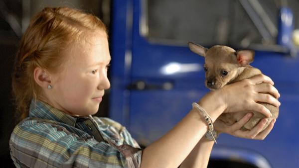 Emma (Aurelia Stern) will die Chiwawa-Welpen retten. | Rechte: NDR/Romano Ruhnau