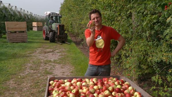 André will wissen, wie der Apfel in den Supermarkt kommt. | Rechte: WDR