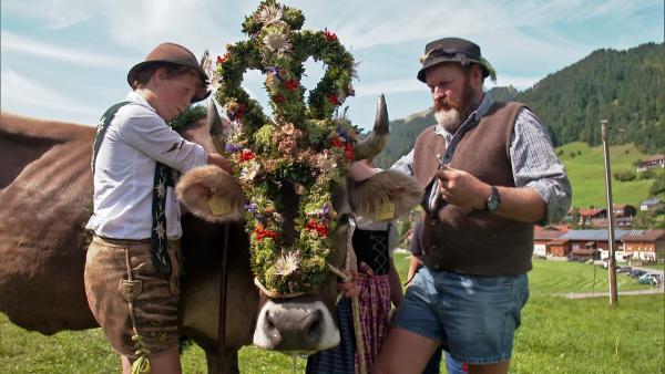 Bunt geschmückt und mit lautem Gebimmel kommt Kuh Lena mit ihrer Herde ins Tal zu ihren BesitzerInnen. | Rechte: WDR
