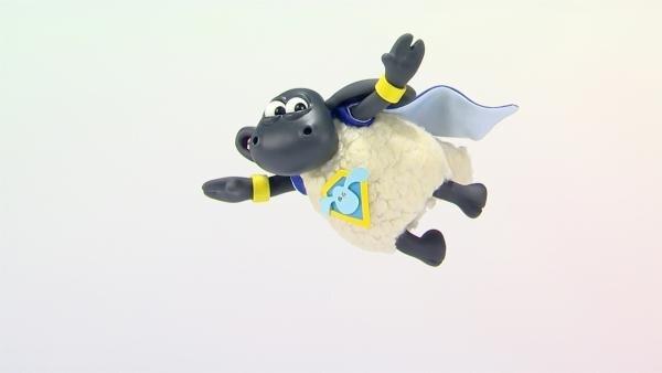 Timmy fliegt durch die Luft. | Rechte: WDR