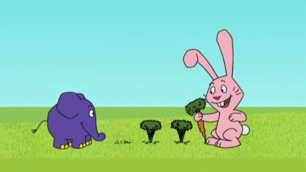Hase und Elefant ernten Möhren. | Rechte: WDR