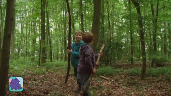 Jonas und David erleben draußen Abenteuer und bauen eine Hütte im Wald mit Ästen und Stöcken   Rechte: KiKA