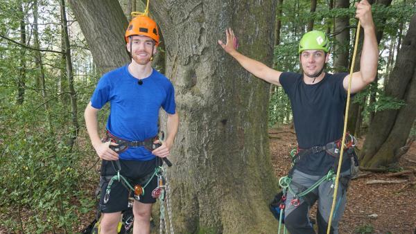 Was zum Baumklettern alles dazugehört, will Stefan mit Baumpfleger Malte ausprobieren. | Rechte: ZDF/Annalena Renneisen