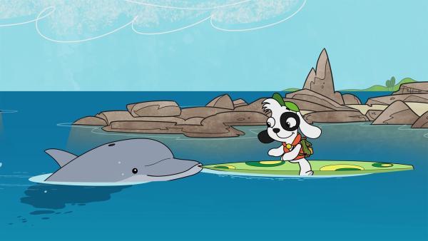 Doki freundet sich mit einem Delfin an. | Rechte: KiKA/Portfolio Entertainment