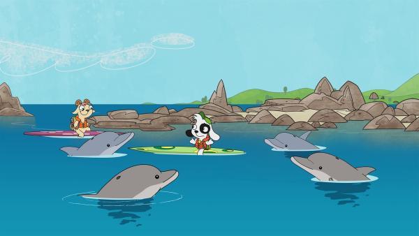 Die Delfinfreunde wollen Doki nicht mehr wegpaddeln lassen. | Rechte: KiKA/Portfolio Entertainment