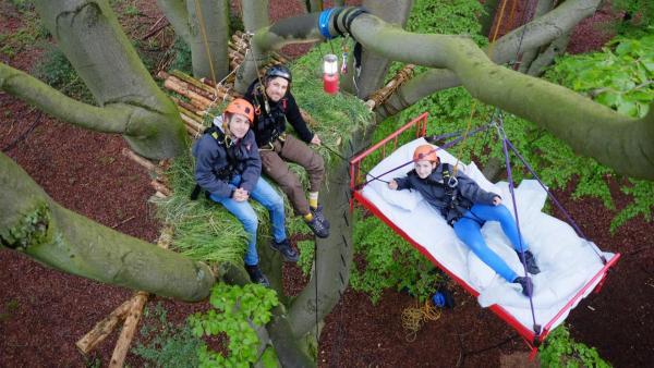 Laura, Tommy und Leopold auf den Schlafplätzen im Baum | Rechte: ZDF