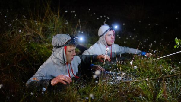 Bettkampf bei Nacht   Rechte: ZDF