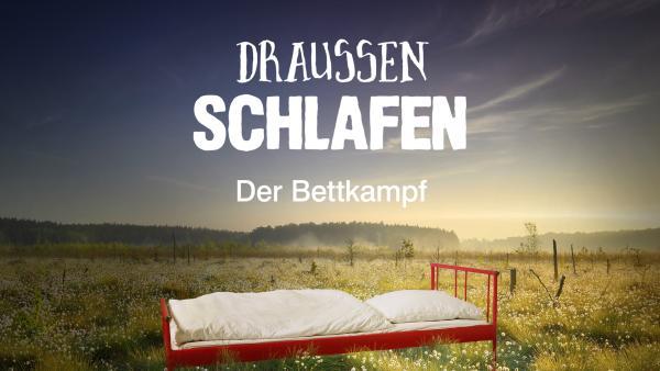 Draußen schlafen - Der Bettkampf auf zdftivi.de | Rechte: ZDF