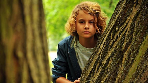 Moritz (Michael Sommerer) macht im Wald eine unerwartete, aber großartige Entdeckung. | Rechte: ZDF/Conny Klein