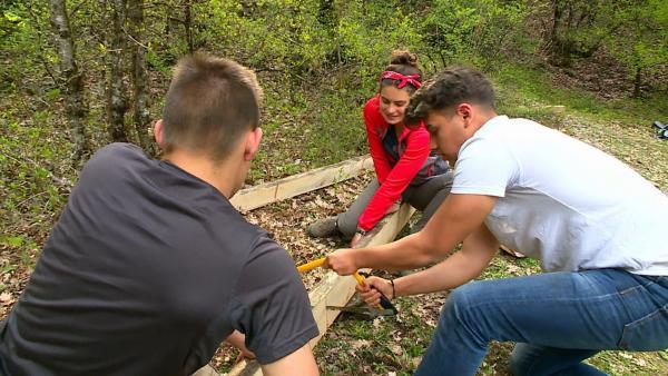 Alle packen an, um ein großes Baumhaus zu bauen.   Rechte: hr/E+U TV Film- und Fernsehproduktion