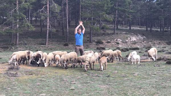 Coach Tobi stellt jeden Tag neue Herausforderungen. Heute müssen Schafe getrieben werden. | Rechte: hr/E+U TV Film- und Fernsehproduktion