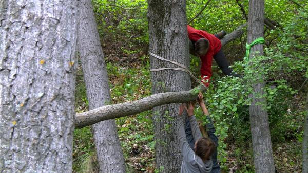 Der Baum darf nicht verletzt werden. Das bedeutet: keine Nägel oder Schrauben direkt in die Baumstämme! Es gibt eine Menge Möglichkeiten, die Balken und Äste mit Gurten, Seilen oder Schlingen in den Baum zu hängen oder sie um den Stamm zu klemmen. Vielleicht könnt ihr die Balken einfach in stabile Astgabeln legen? So wird der Baum nicht verletzt. | Rechte: KiKA/ HR
