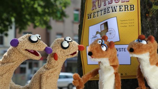 Die erdmännchen Jan & Henry mit den mysteriösen Doppelgängern. | Rechte: NDR/bigSmile