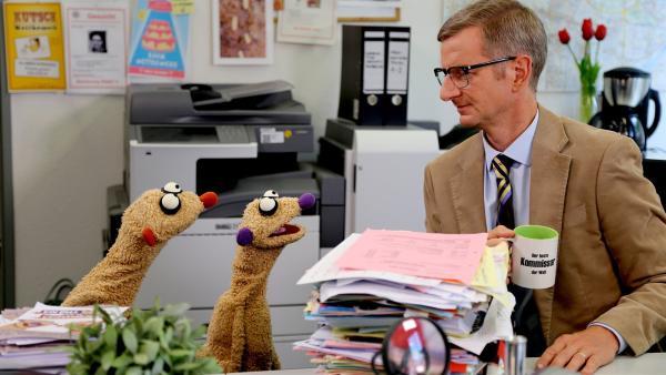 Die Erdmännchen Jan & Henry im Büro des Kommissars (Michael Kessler). | Rechte: NDR/bigSmile