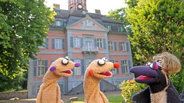 Jan & Henry am Schloss der Gräfin. | Rechte: bigSmile/NDR