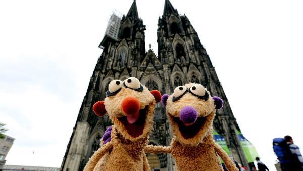Jan & Henry machen einen Ausflug nach Köln. | Rechte: NDR/bigSmile
