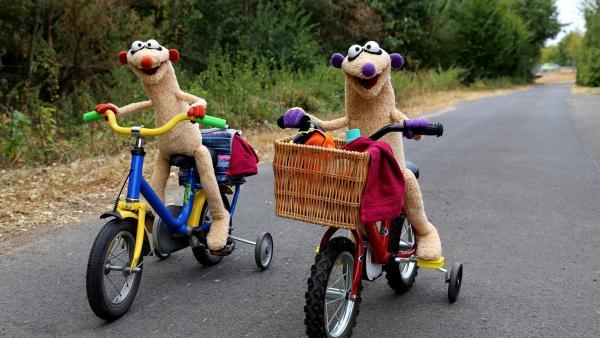 Jan & Henry machen eine Fahrradtour.   Rechte: bigSmile/NDR