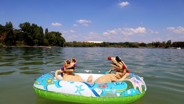 Jan & Henry machen einen Ausflug an den Badesee. | Rechte: bigSmile/NDR