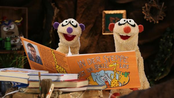 Die Erdmännchen Jan und Henry lesen gemeinsam ein Buch. | Rechte: bigSmile/NDR