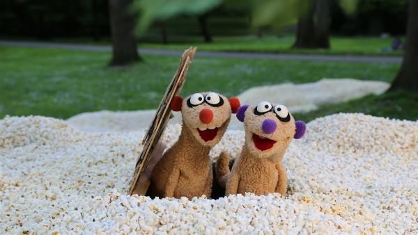 Vor der Haustür von Jan und Henry schneit es Popcorn. | Rechte: NDR/bigSmile