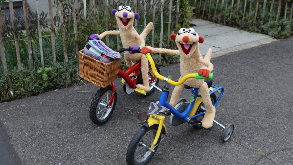 Jan & Henry machen eine Fahrradtour. | Rechte: NDR/bigSmile
