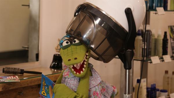 Krokodella bekommt eine neue Frisur.   Rechte: NDR/bigSmile