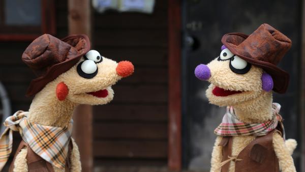 Jan & Henry als Cowboys | Rechte: NDR/bigSmile