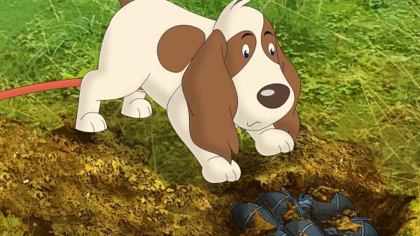 Gabys Hund Oscar hat im Wald einen fragwürdigen Schatz ausgebuddelt: Handgranaten! | Rechte: ZDF/Neue Trickompany