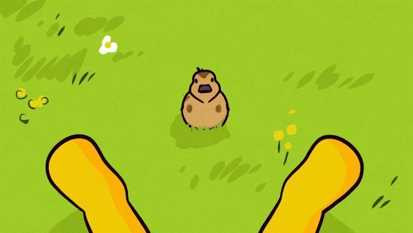 Nanu? Ella ist eine kleine Ente zugelaufen.   Rechte: SWR/NORMAAL