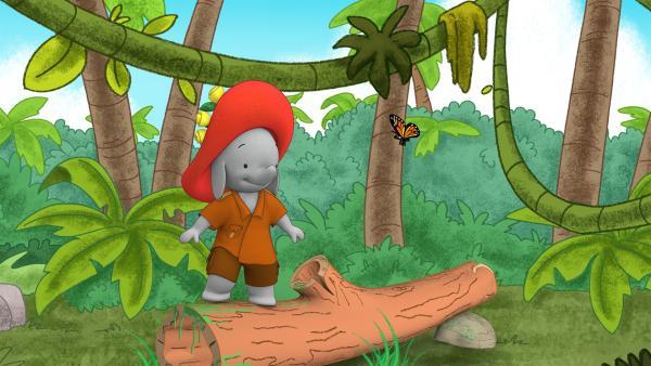 Ella hat einen Monarchfalter entdeckt.  | Rechte: KiKA/TVOKids/FremantleMedia Kids & Family Entertainment/DHX Cookie Jar Inc.