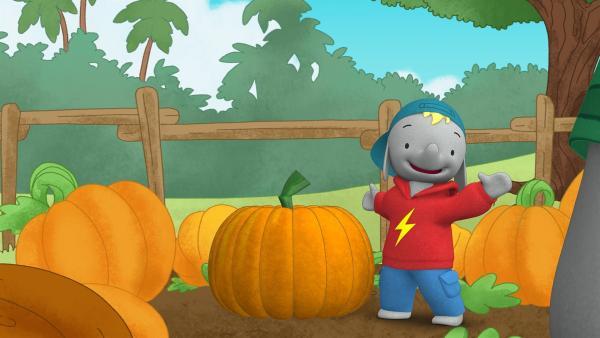Frankie hat sich einen großen Kürbis ausgesucht.  | Rechte: KiKA/TVOKids/FremantleMedia Kids & Family Entertainment/DHX Cookie Jar Inc.