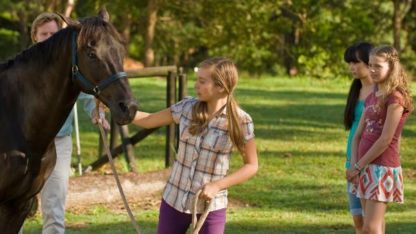 Stolz führt Ally (Marny Kennedy) einen neuen Hengst auf ihrem Hof vor. | Rechte: NDR/Southern Star