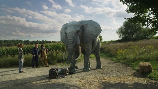 Elefant Tuko hat Hunger. | Rechte: NDR/Sinking Ship Entertainment/Hulu/CBC/Radio Canada/CBBC/SRC