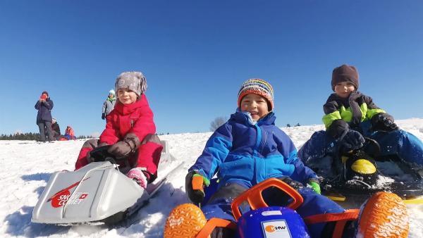 Emma, Anton und Henry sitzen auf ihren Schlitten. | Rechte: KiKA