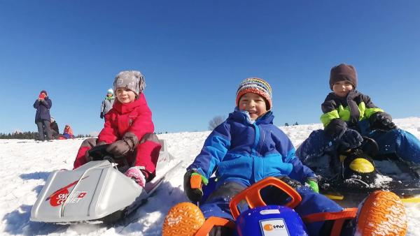 Emma, Anton und Henry auf ihren Schlitten | Rechte: KiKA