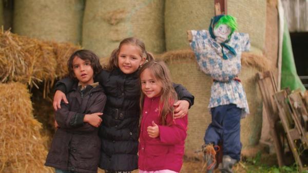 Drei Kinder bauen eine Vogelscheuche. | Rechte: KiKA/Motion Works GmbH