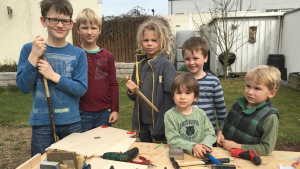 Liron, Javis, Marlon, Manko, Adriel und Elias bauen ihre Schilde. | Rechte: KiKA/Motion Works GmbH