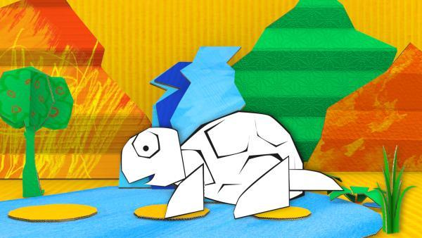 Eine Steckschildkröte. | Rechte: kika
