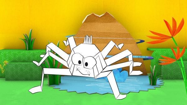 Die gebastelte Spinne aus Papier von ENE MENE BU krabbelt aus einem Teich.   Rechte: KiKA