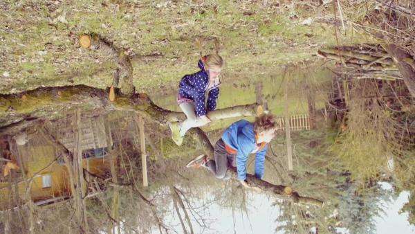 Ein Junge und ein Mädchen hängen wie Faultiere an einem Ast. | Rechte: KiKA
