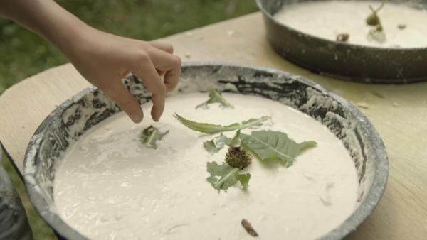 Selbstgemachter Mehlkleister wird in einer Kuchenform mit Naturmaterialien wie Löwenzahnblättern dekoriert. Fertig ist ein Blumenkuchen. | Rechte: KiKA
