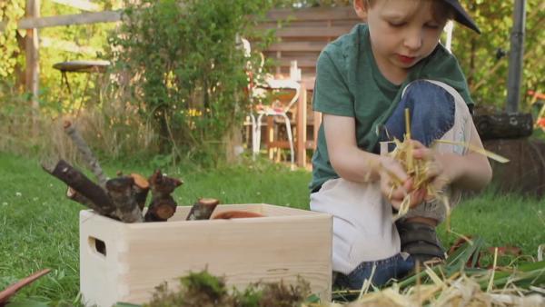 Emil packt in einen Holzkasten Stroh. Das ist super geeignet für sein Insektenhaus. | Rechte: KiKA