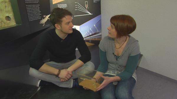 Felix im Gespräch mit Eva Gebauer vom Bionicum in Nürnberg | Rechte: KiKA/tvision GmbH