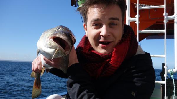 Felix auf der Ostsee mit frisch gefangenem Dorsch                 | Rechte: KiKA/tvision GmbH